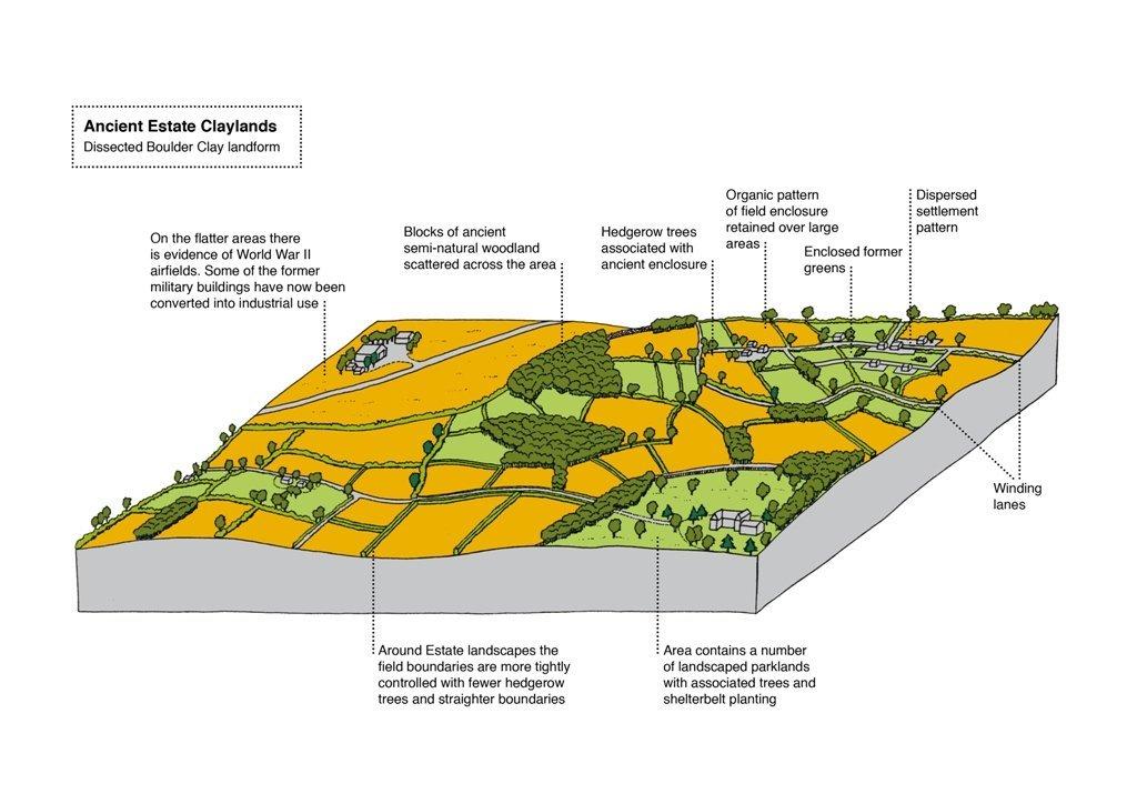 Ancient Estate Claylands