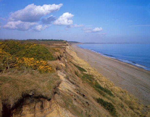 Dunwich Cliffs ©M Farrow