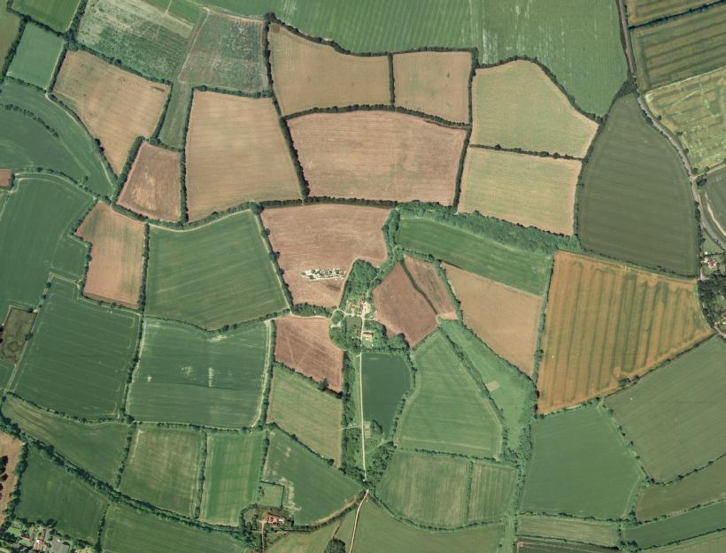 An intact field pattern of random fields near Eye