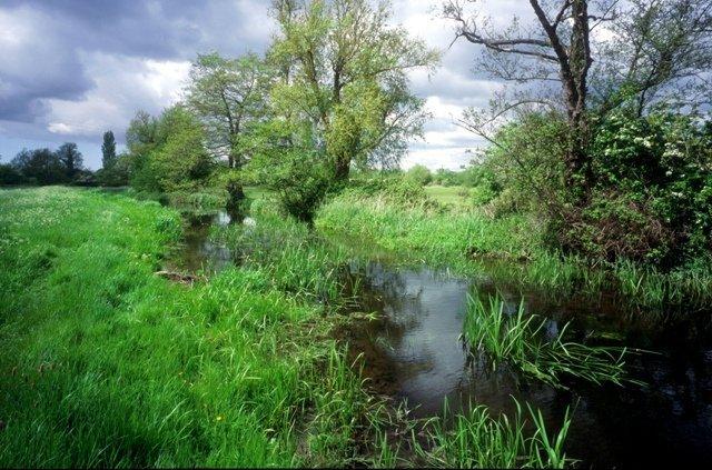 Deben Valley Meadowlands ©M Farrow