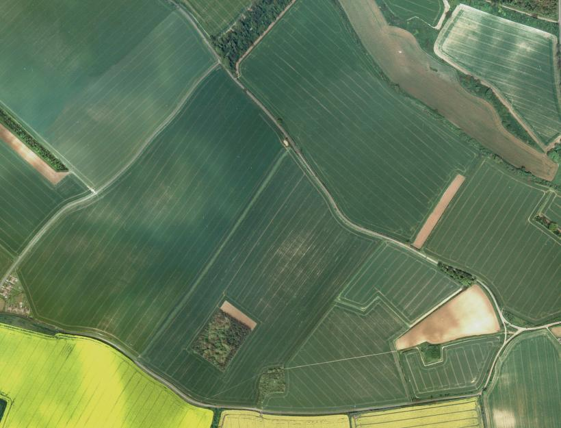 Regular fields and squared off plantations